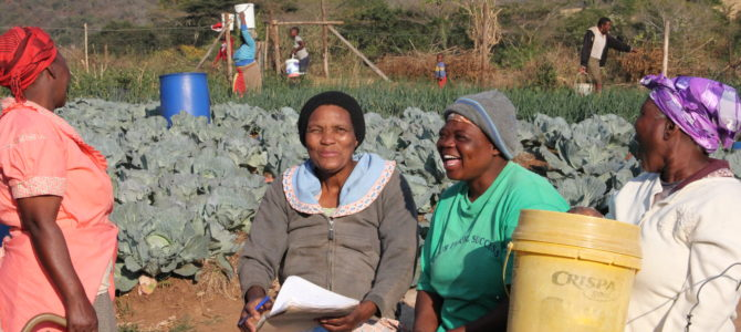 Thembabantu Farmers Set an Example for Youth